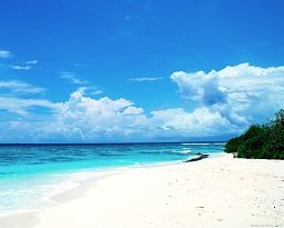 The_refreshing_coastal_scenery_shore_beach_HD_Wallpaper_1280x1024